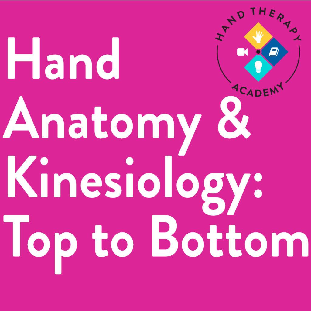 handanatomy
